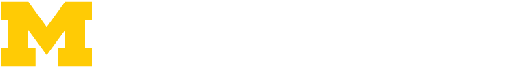 Michigan Institute for Research in Astrophysics