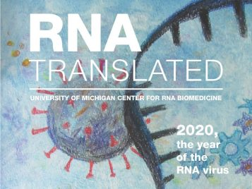 RNA-Translated