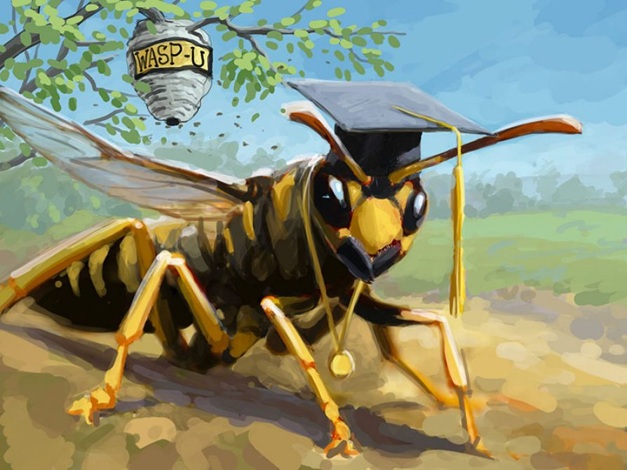 A wasp wearing a graduation cap with a nest in the background that reads WASP U. Illustration: John Megahan