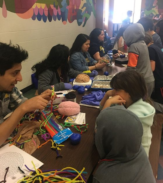Volunteers teach curious children about the brain and neurons. Image credit: Kristel Sánchez.