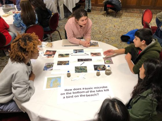 Students engage around the topic of around the topic of avian botulism in Lake Michigan.