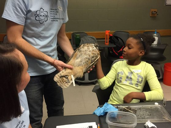 "A student gets up close and personal with a great horned owl as part of the ""Who Eats Whom?"" activity by the Vandermeer and Perfecto labs."