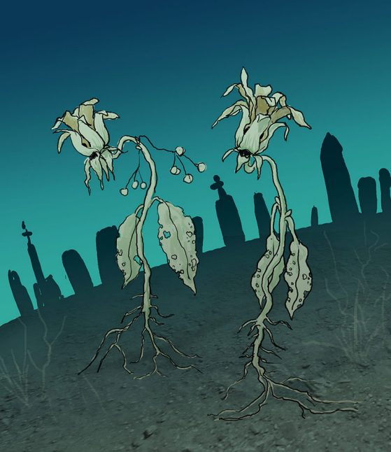 Illustration of zombie plants walking from a graveyard