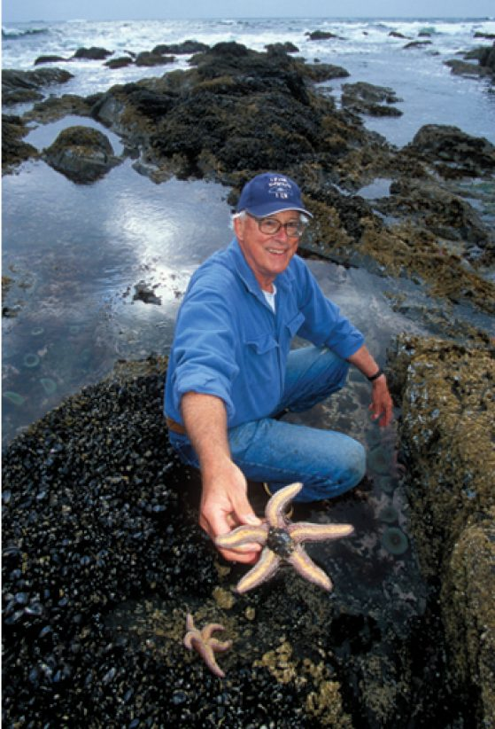 Robert Paine at Mukkaw Bay, on the Olympic Peninsula in Washington. To understand the role of predatory starfish, he hurled them from an area and later returned to assess the sea life without them. Image credit: Kevin Schafer, Alamy Stock Photo, Nautilus