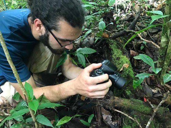 Greg Pandelis photographing a Strawberry Dart Frog in the lowland rainforest of Nicaragua (visible on log to the right of his camera) during scientific collecting expeditions organized by the Rabosky lab. Image: Jose G. Martinez-Fonseca.