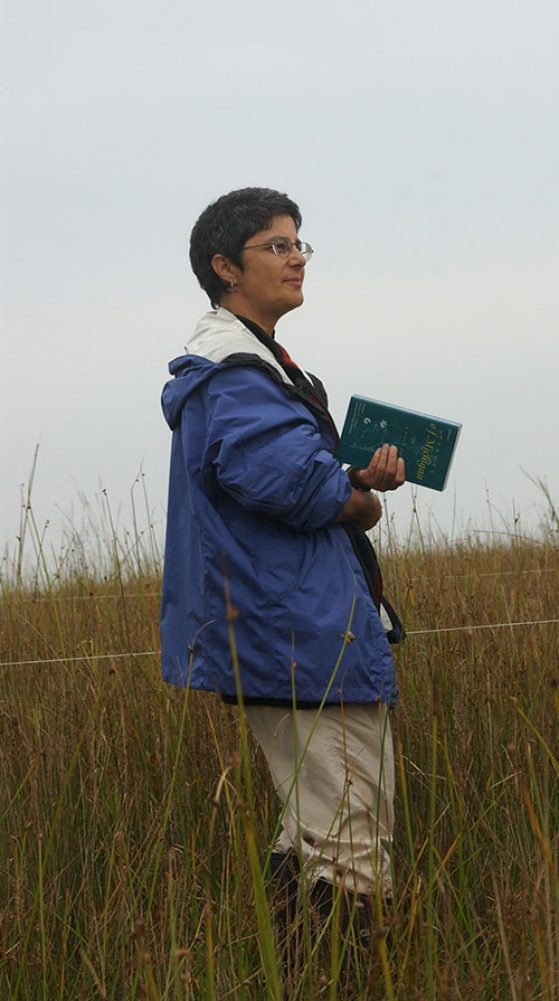 Deborah Goldberg collecting wetland plants to measure biomass allocation in tall grasses wearing waders.