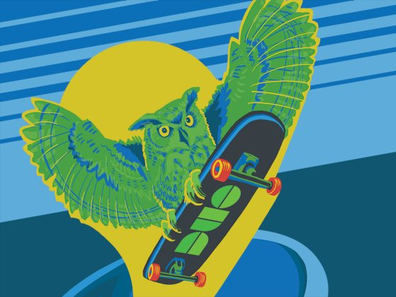 Illustration of an green and blue owl on a skateboard. The bottom of the board says Duo.