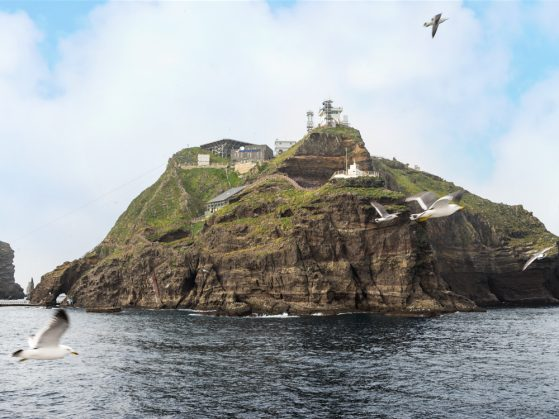 A picture of Dokdo/Takeshima island that shows sheer cliff rising from the water and a grassy area on top. You can also see build structures, including the helipad and a house. Seagulls are flying in the foreground.