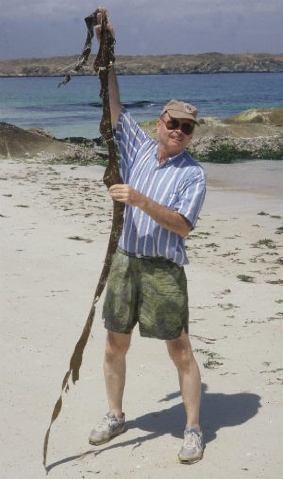 Mike Wynne holding a large specimen of an Omani seaweed in 2000