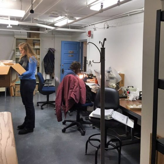 Students in Bioarch Lab