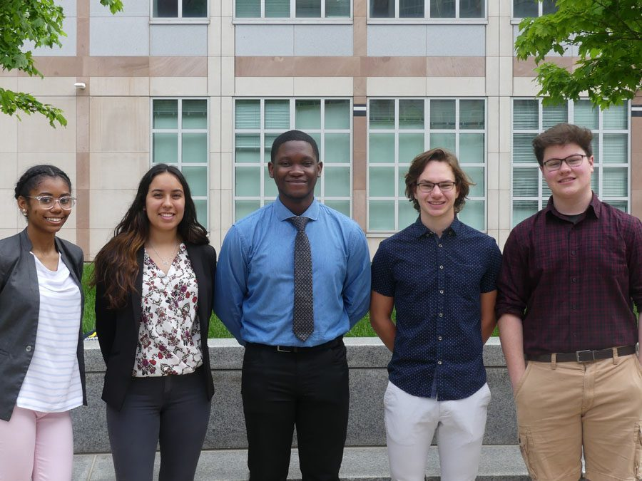 Engineering Summer Research Fellowship