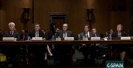 Witness Panel from Hearing