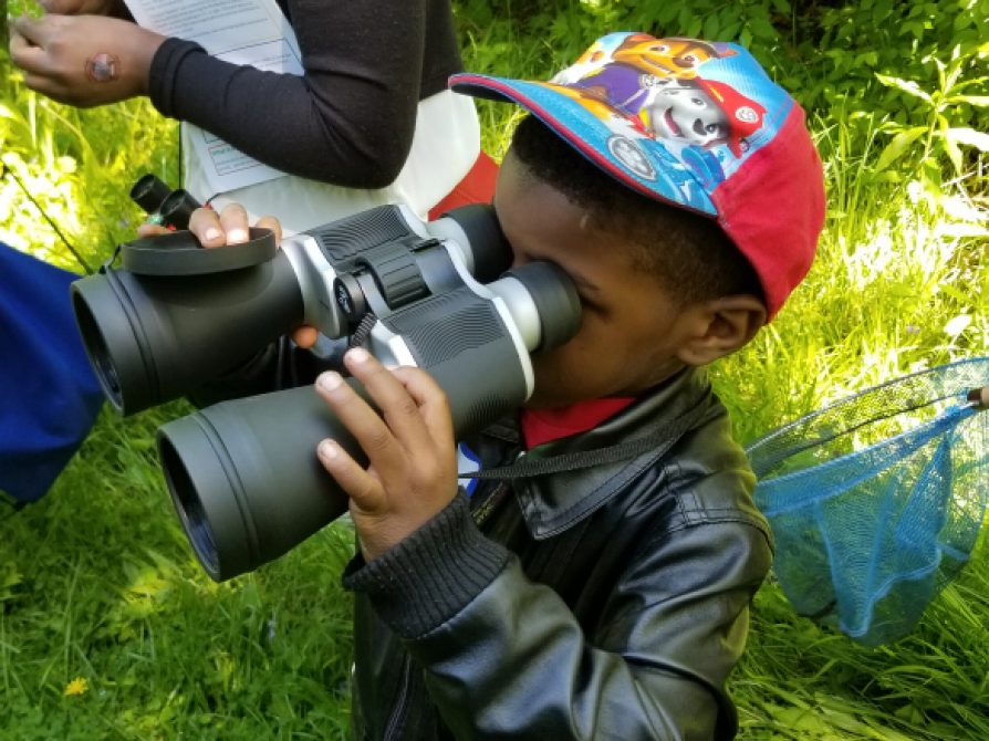 The (relatively) large binoculars did not discourage this curious naturalist.