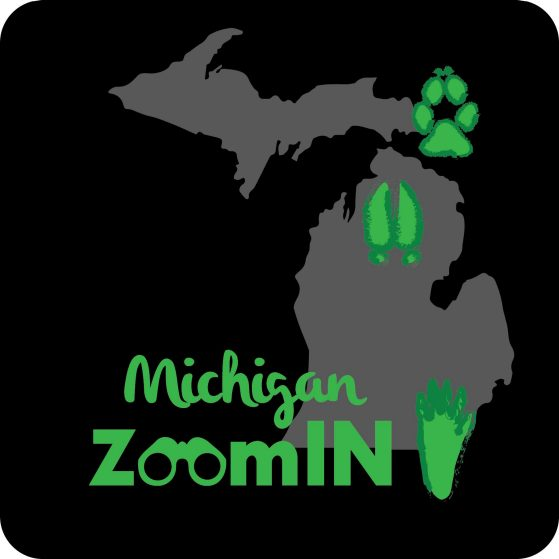 Michigan ZoomIn logo