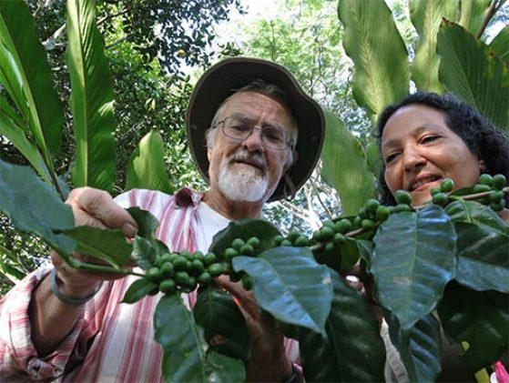 John Vandermeer and Ivette Perfecto inspecting a coffee plant in Mexico.