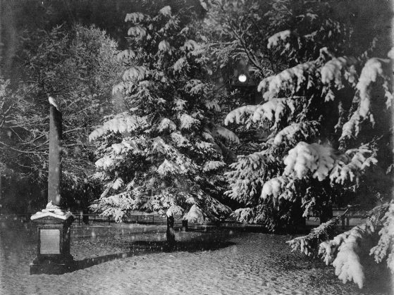 a black and white photo of a pillar monument against a backdrop of evergreen trees