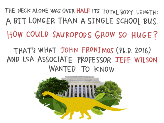 The neck alone was over half its total body length: a bit longer than a single school bus. How could sauropods grow so huge? That's what John Fronimos (Ph.D. 2016) and LSA associate professor Jeff Wilson wanted to know.