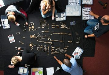 Anthropologists looking over fossilized skeleton pieces spread across a black cloth