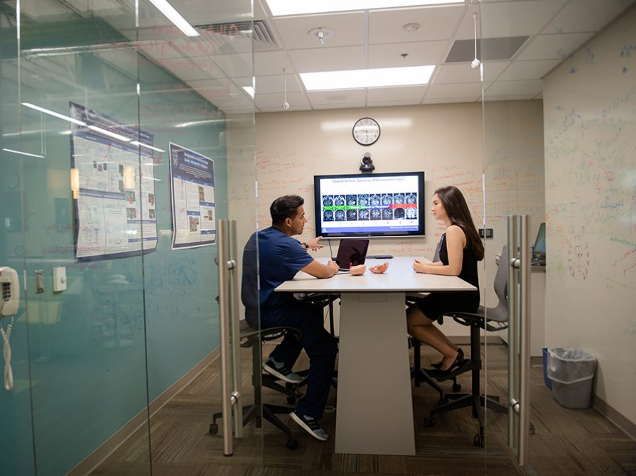 Student working with physician in conference room
