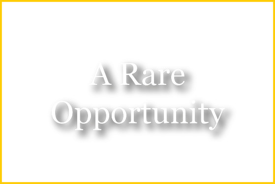An Exceptional Scholarship