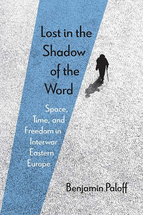 cover of Lost in the Shadow of the Word