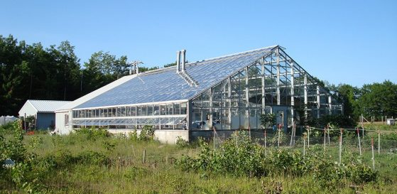 A steel and glass greenhouse is shown in a field.
