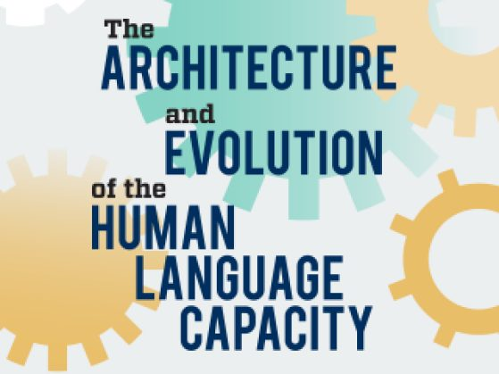 The Architecture and Evolution of the Human Language Capacity